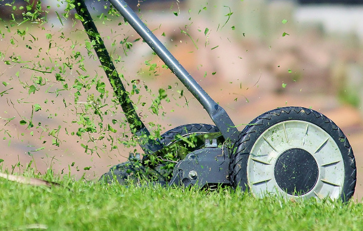 Trädgårdsservice och trädgåtdsskötsel året runt